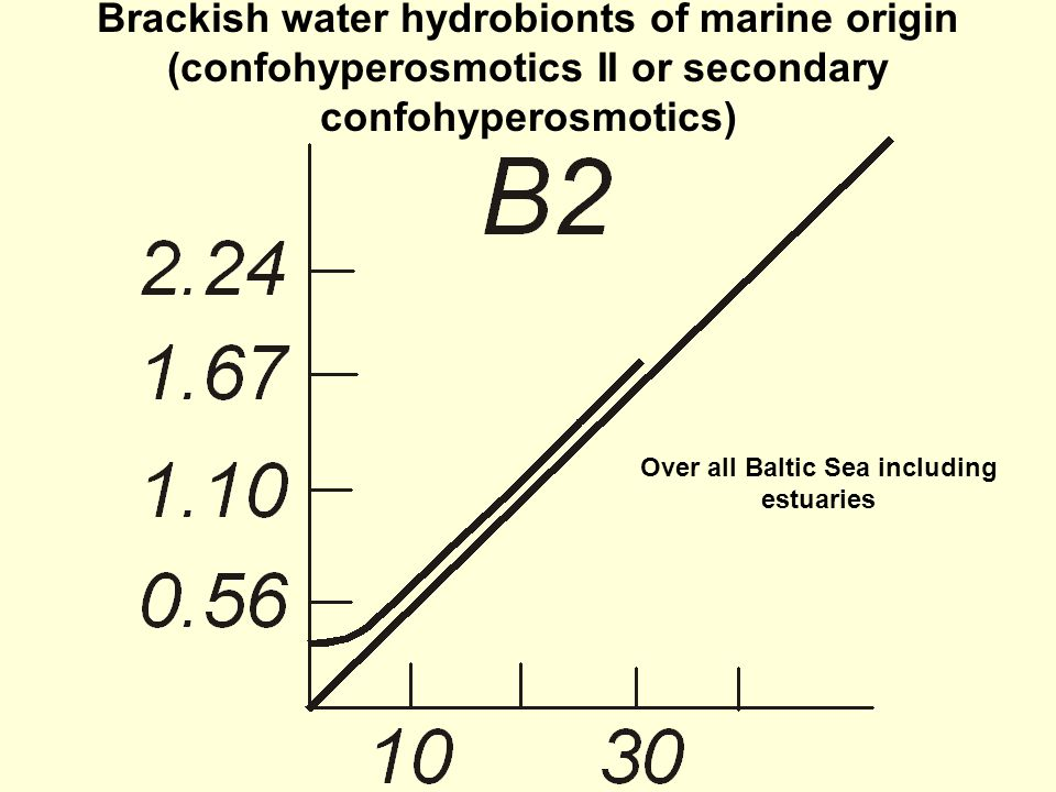 Brackish water hydrobionts of marine origin (confohyperosmotics II or secondary confohyperosmotics) Over all Baltic Sea including estuaries