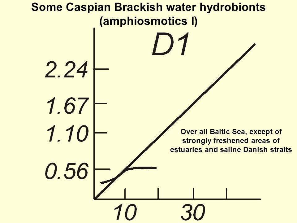 Some Caspian Brackish water hydrobionts (amphiosmotics I) Over all Baltic Sea, except of strongly freshened areas of estuaries and saline Danish straits