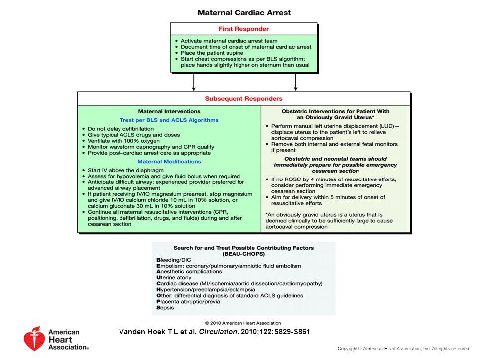 Vanden Hoek T L et al.Circulation. 2010;122:S829-S861 Copyright © American Heart Association, Inc.