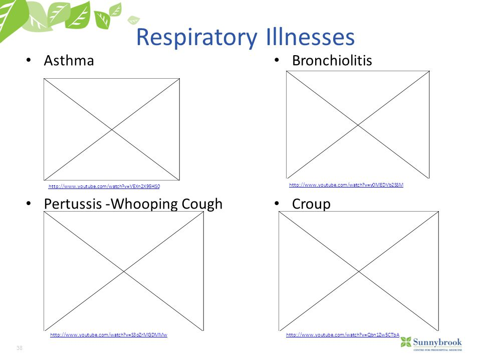 38 Respiratory Illnesses Asthma Pertussis -Whooping Cough Bronchiolitis Croup http://www.youtube.com/watch v=VEXn2X95HS0 http://www.youtube.com/watch v=S3oZrMGDMMw http://www.youtube.com/watch v=y0MEDVb2SSM http://www.youtube.com/watch v=Qbn1Zw5CTbA