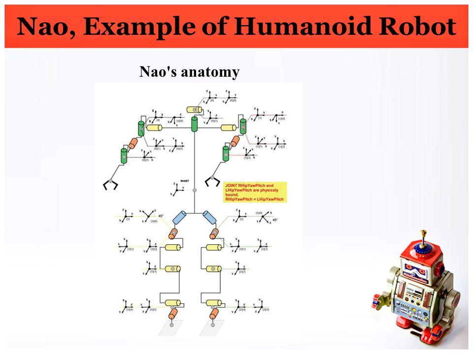 Nao, Example of Humanoid Robot Nao's anatomy