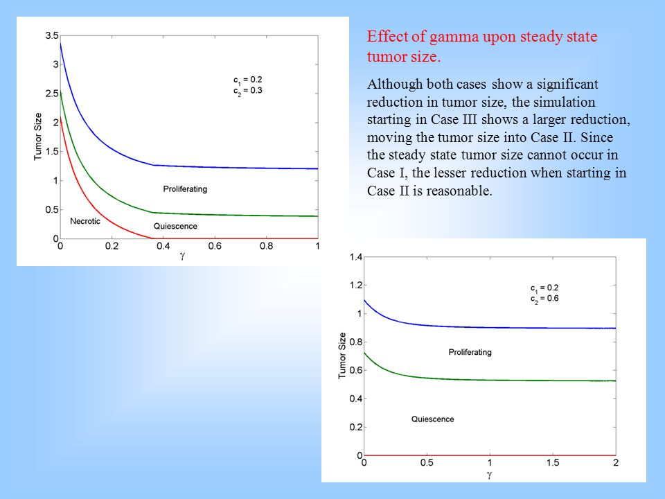 Effect of gamma upon steady state tumor size.