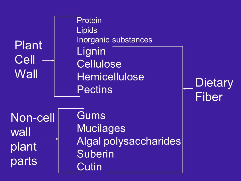 Protein Lipids Inorganic substances Lignin Cellulose Hemicellulose Pectins Gums Mucilages Algal polysaccharides Suberin Cutin Plant Cell Wall Non-cell wall plant parts Dietary Fiber