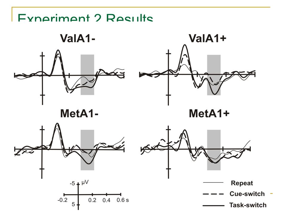 Trial type x COMT x DRD2: Response times: F1,31=5.7, p=0.023 Novelty-P3 brain response F1,31=7.5, p=0.010 Experiment 2 Results