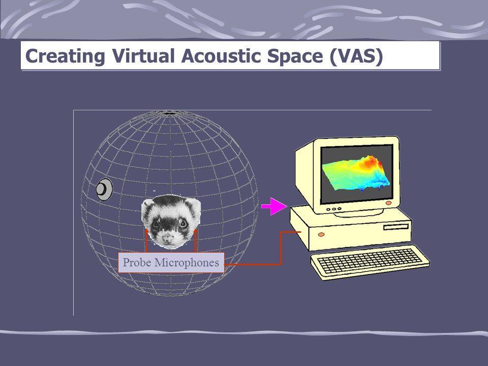 Creating Virtual Acoustic Space (VAS) Probe Microphones