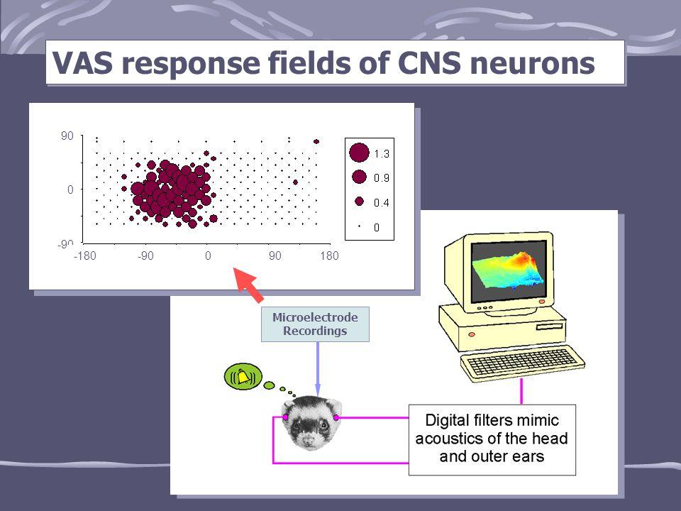 VAS response fields of CNS neurons Microelectrode Recordings 0019/vas4@30 90 0 -90 -180 -90 0 90 180