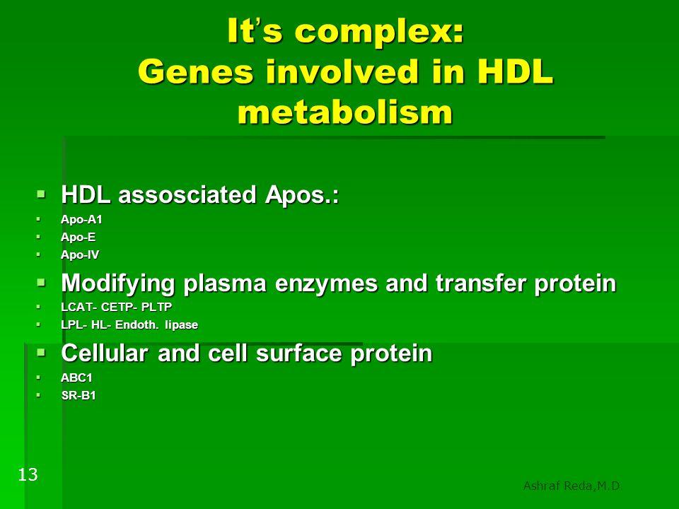It ' s complex: Genes involved in HDL metabolism  HDL assosciated Apos.:  Apo-A1  Apo-E  Apo-IV  Modifying plasma enzymes and transfer protein 