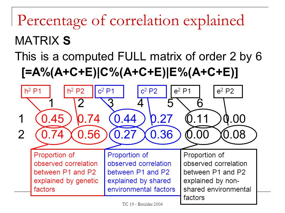 TC 19 - Boulder 2006 Percentage of correlation explained MATRIX S This is a computed FULL matrix of order 2 by 6 [=A%(A+C+E)|C%(A+C+E)|E%(A+C+E)] 1 2