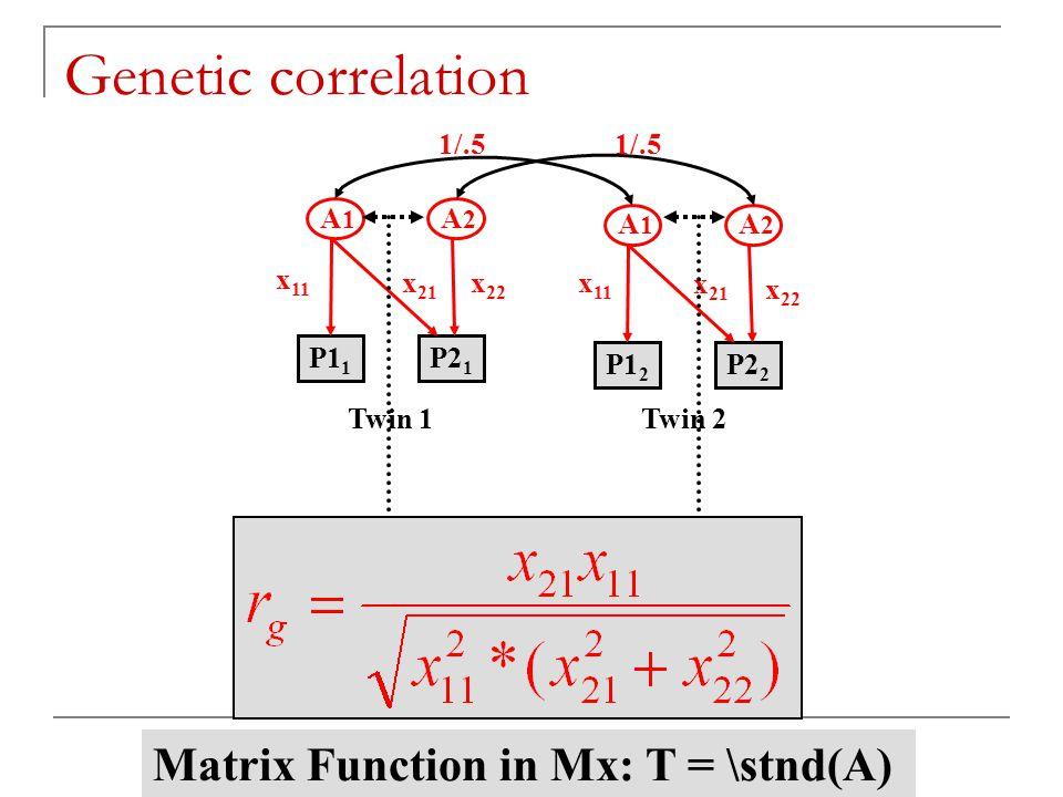 TC 19 - Boulder 2006 1/.5 A 1 A 2 x 11 P1 1 P2 1 x 22 x 21 A 1 A 2 x 11 P1 2 P2 2 x 22 x 21 Twin 1Twin 2 Genetic correlation Matrix Function in Mx: T = \stnd(A)