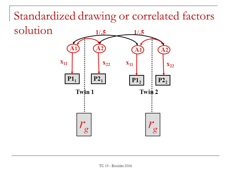TC 19 - Boulder 2006 1/.5 A 1 A 2 x 11 P1 1 P2 1 x 22 A 1 A 2 x 11 P1 2 P2 2 x 22 Twin 1Twin 2 Standardized drawing or correlated factors solution