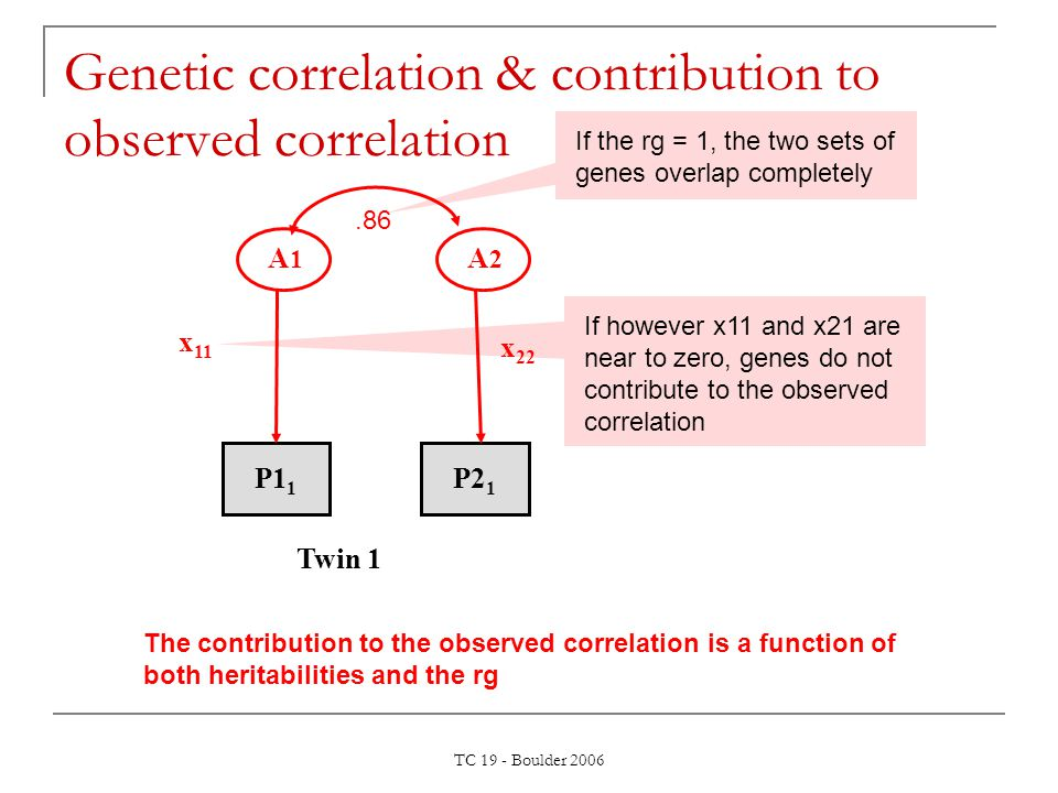 TC 19 - Boulder 2006 Genetic correlation & contribution to observed correlation A 1 A 2 x 11 P1 1 P2 1 x 22 Twin 1.86 If the rg = 1, the two sets of g