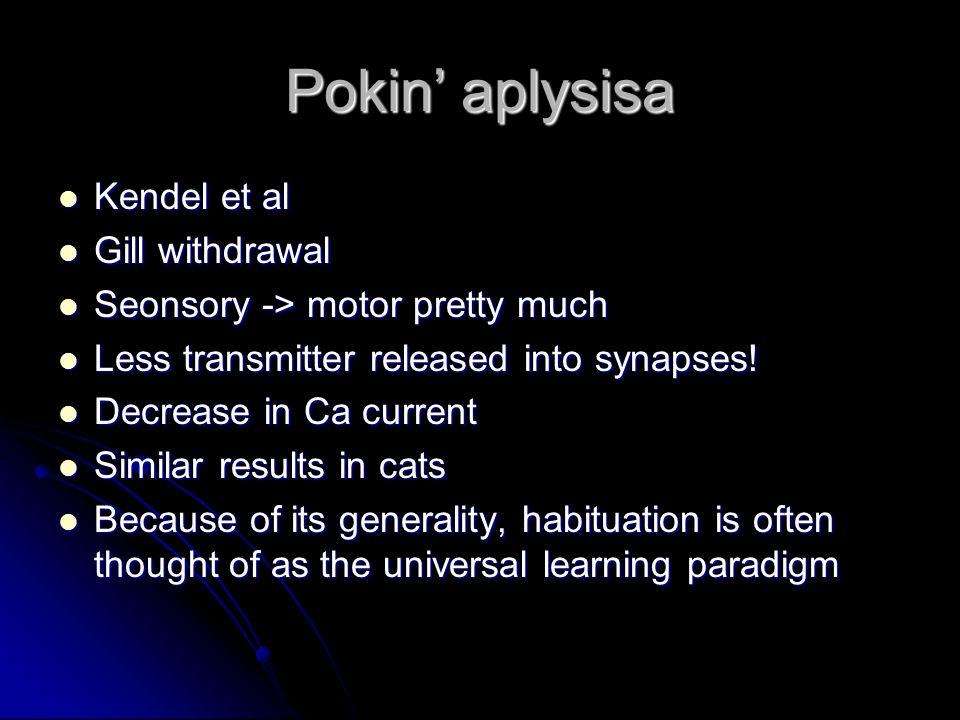Pokin' aplysisa Kendel et al Kendel et al Gill withdrawal Gill withdrawal Seonsory -> motor pretty much Seonsory -> motor pretty much Less transmitter released into synapses.
