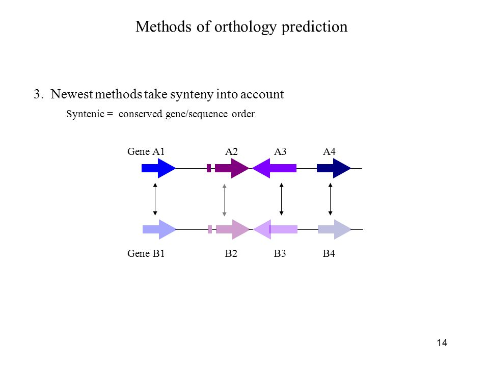 14 3. Newest methods take synteny into account Methods of orthology prediction Syntenic = conserved gene/sequence order Gene A1A2A3A4 Gene B1B2B3B4
