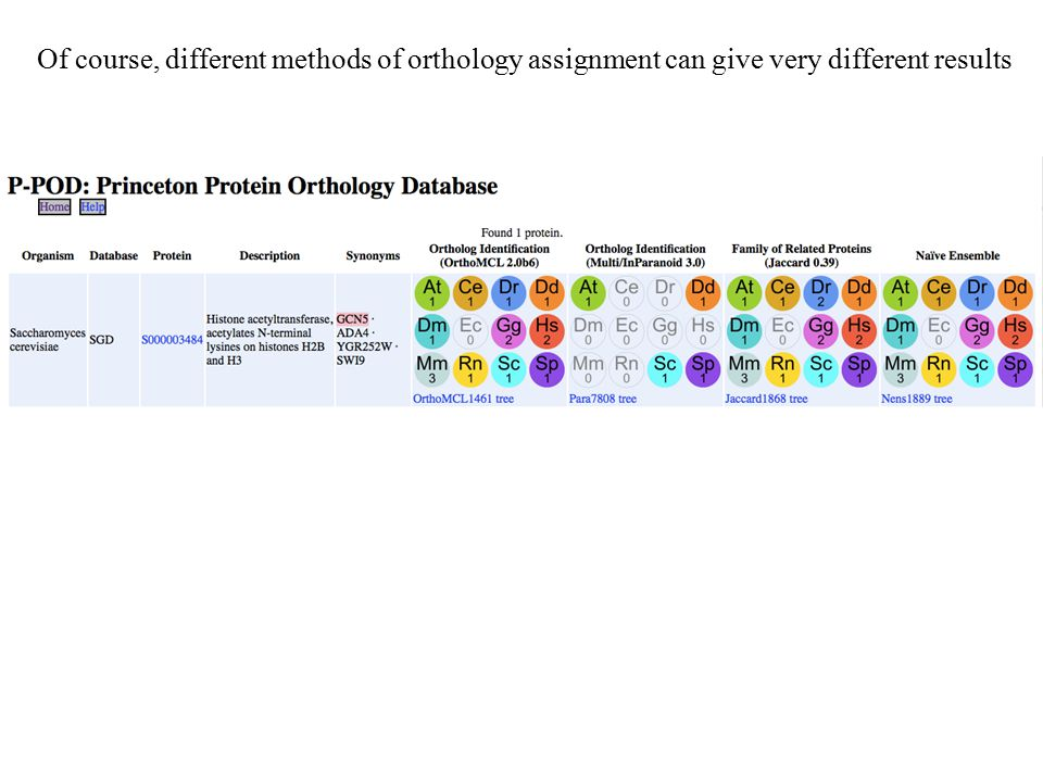 Of course, different methods of orthology assignment can give very different results
