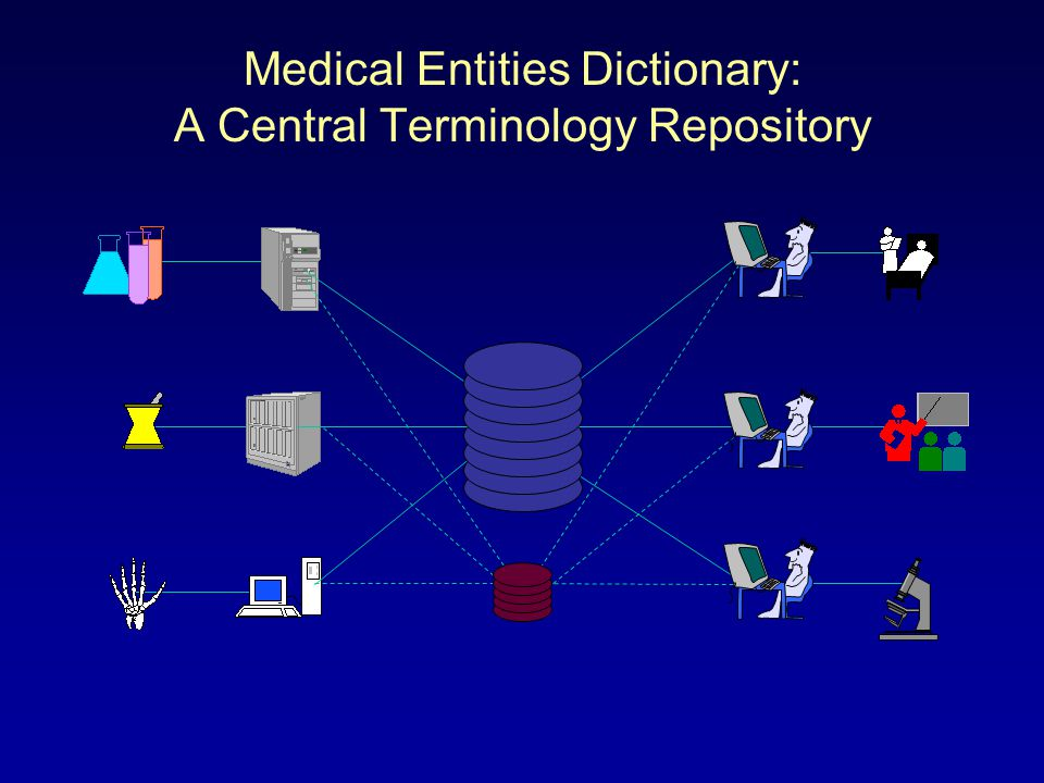 Medical Entities Dictionary: A Central Terminology Repository