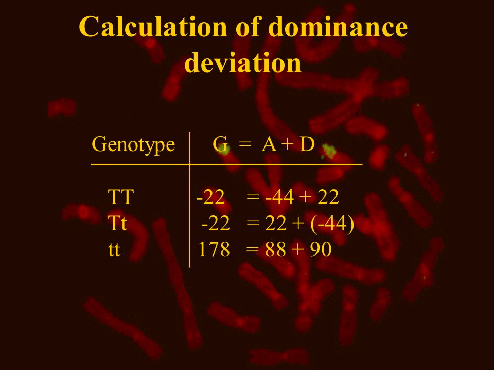 Calculation of dominance deviation Genotype G = A + D TT -22 = -44 + 22 Tt -22 = 22 + (-44) tt 178 = 88 + 90
