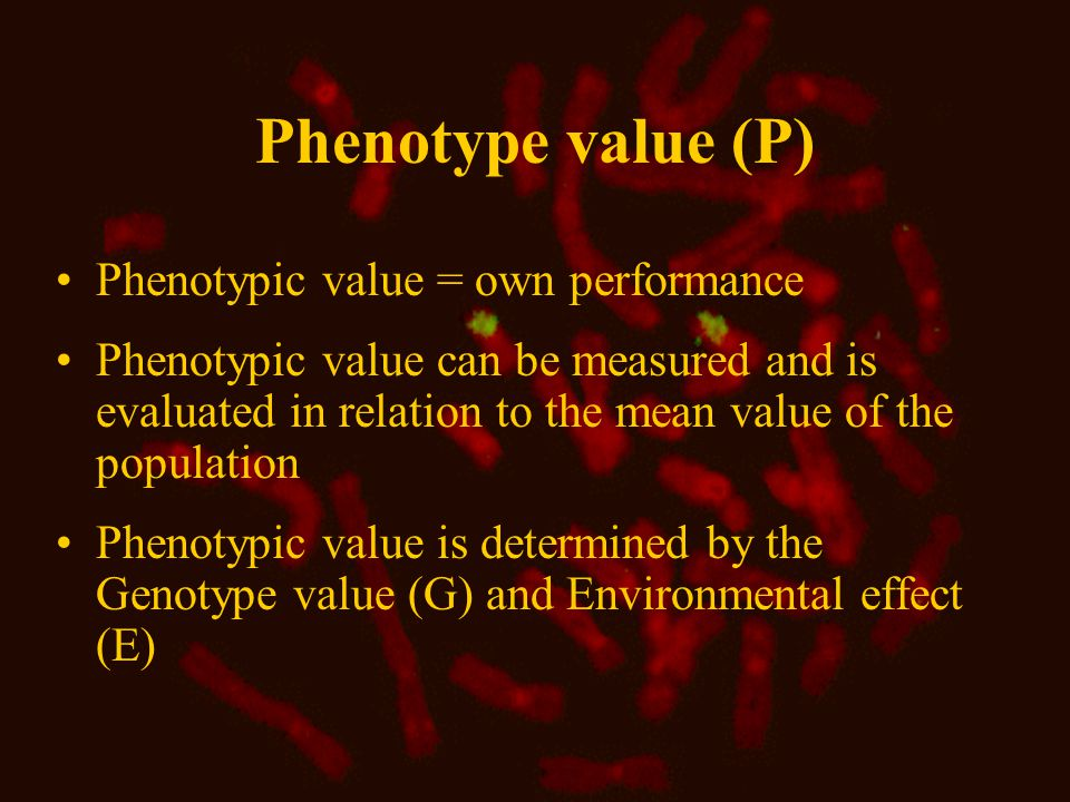 Genotype value (G) Joint effect of all genes in all relevant loci The phenotype mean value (Pg) of individuals with the same genotype