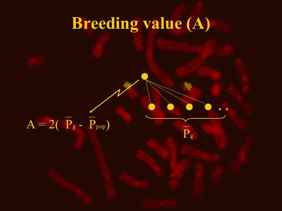 Genotypic value and dominance deviation No Dominance deviation (D) heterozygote = the average of homozygotes 