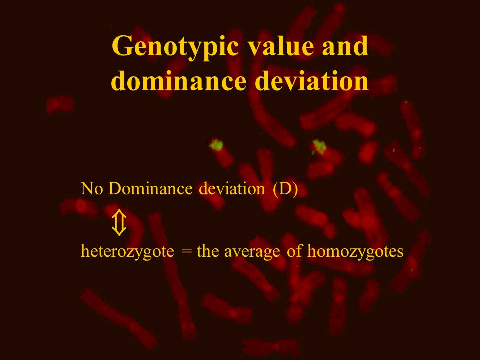 Genotypic value and dominance deviation No Dominance deviation (D) heterozygote = the average of homozygotes 