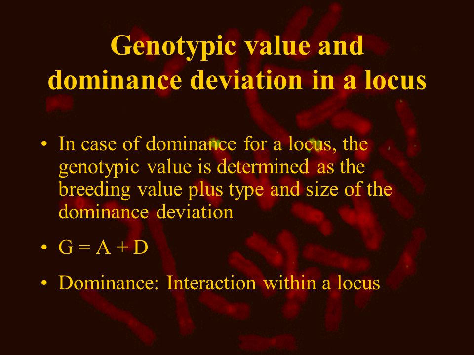 Additive variance (  2 A ) The genetic variance (  2 G ) for a locus is due to differences in breeding values or in dominance deviations  2 A is calculated as the mean value of the additive genetic deviations squared  2 A is due to the differences in breeding values