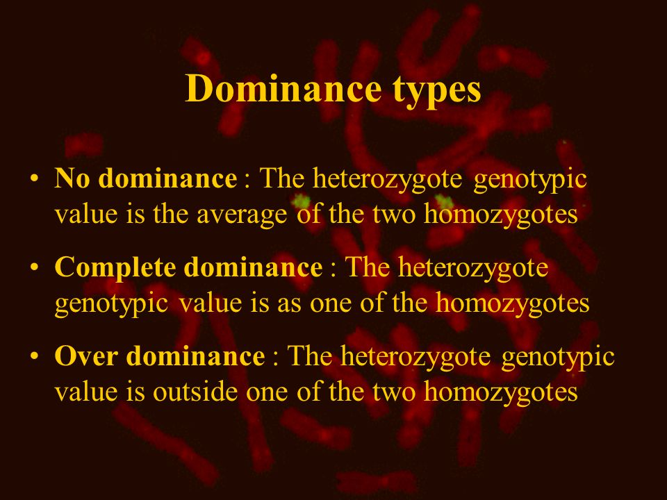 Dominance types No dominance : The heterozygote genotypic value is the average of the two homozygotes Complete dominance : The heterozygote genotypic value is as one of the homozygotes Over dominance : The heterozygote genotypic value is outside one of the two homozygotes