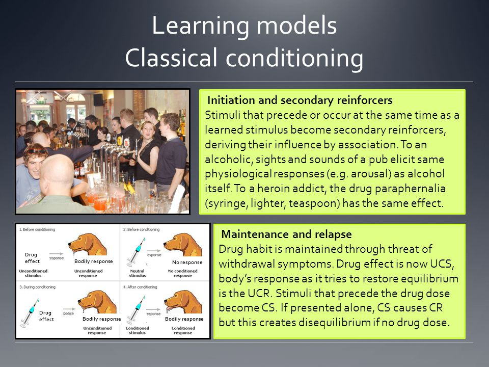 Learning models Classical conditioning Drug effect Bodily response Drug effect Bodily response No response Initiation and secondary reinforcers Stimuli that precede or occur at the same time as a learned stimulus become secondary reinforcers, deriving their influence by association.