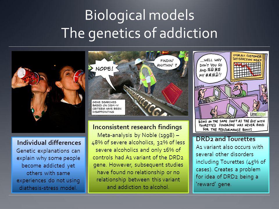 Biological models The genetics of addiction Individual differences Genetic explanations can explain why some people become addicted yet others with same experiences do not using diathesis-stress model.