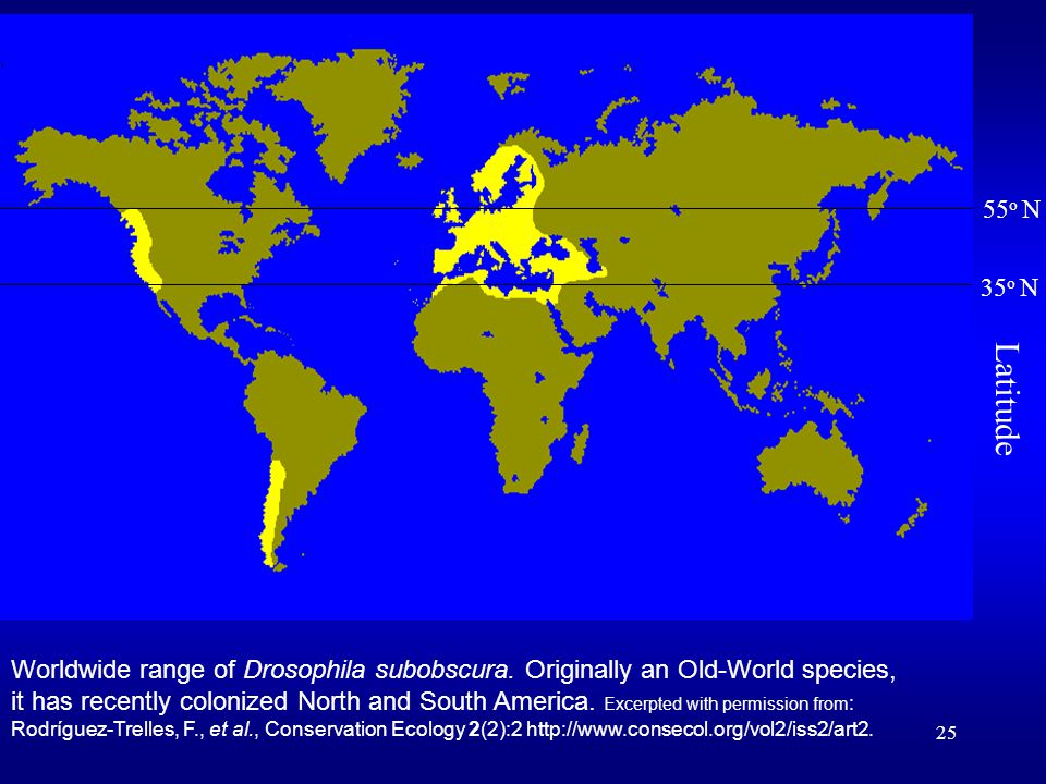 25 Worldwide range of Drosophila subobscura. Originally an Old-World species, it has recently colonized North and South America. Excerpted with permis