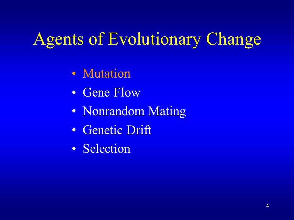 5 Agents of Evolutionary Change Mutation Gene Flow –Migration Nonrandom Mating Genetic Drift Selection