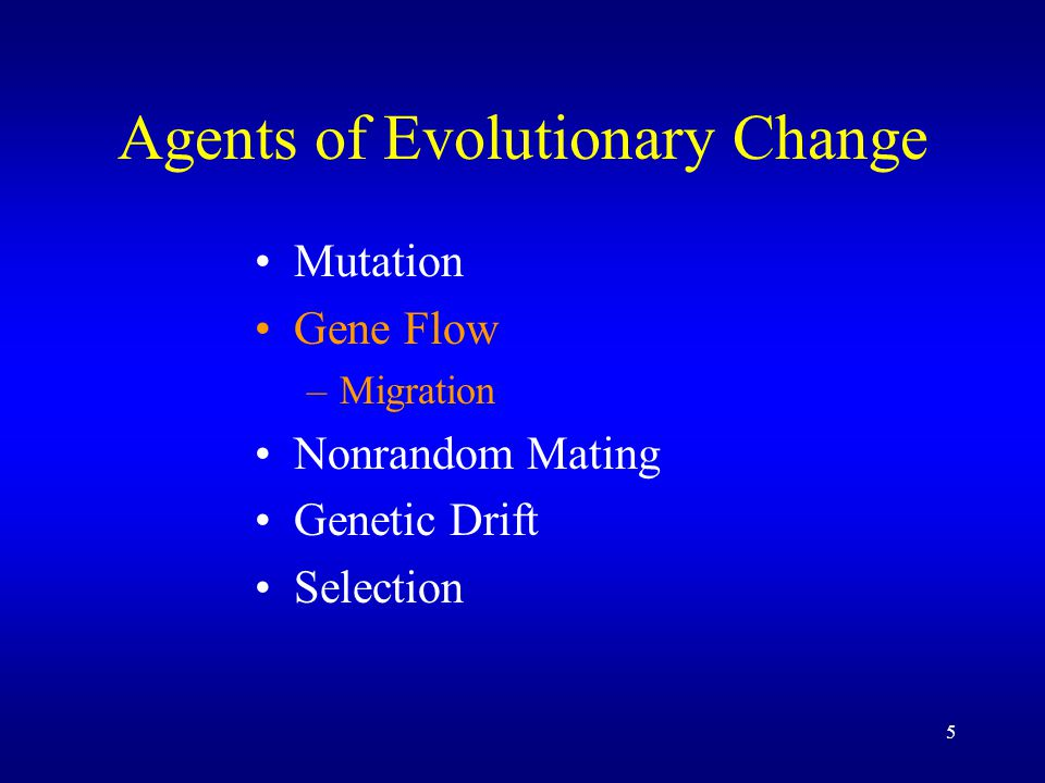 36 What can we learn from our evolution experiment .