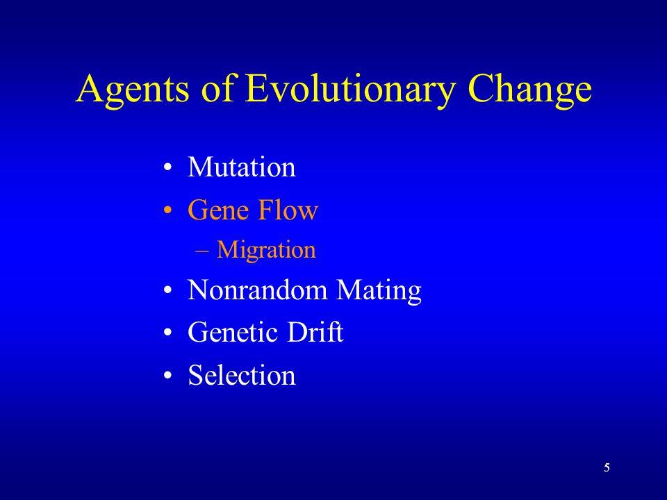 6 Agents of Evolutionary Change Mutation Gene Flow –Migration –Hybridization Nonrandom Mating Genetic Drift Selection