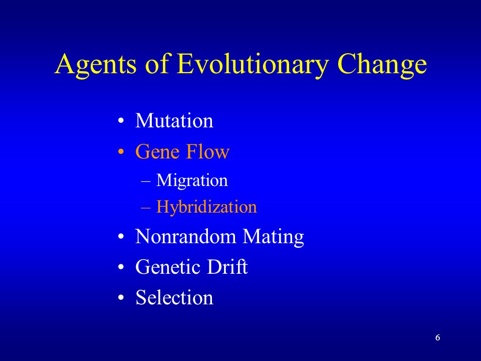 6 Agents of Evolutionary Change Mutation Gene Flow –Migration –Hybridization Nonrandom Mating Genetic Drift Selection