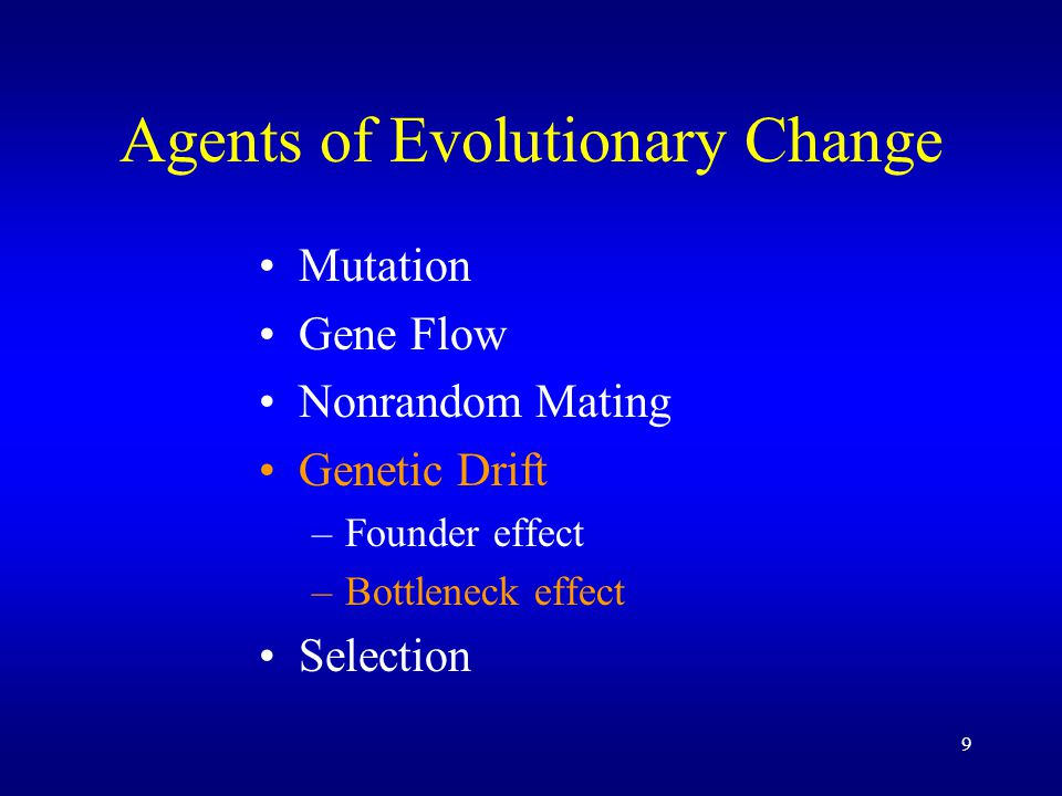 9 Agents of Evolutionary Change Mutation Gene Flow Nonrandom Mating Genetic Drift –Founder effect –Bottleneck effect Selection
