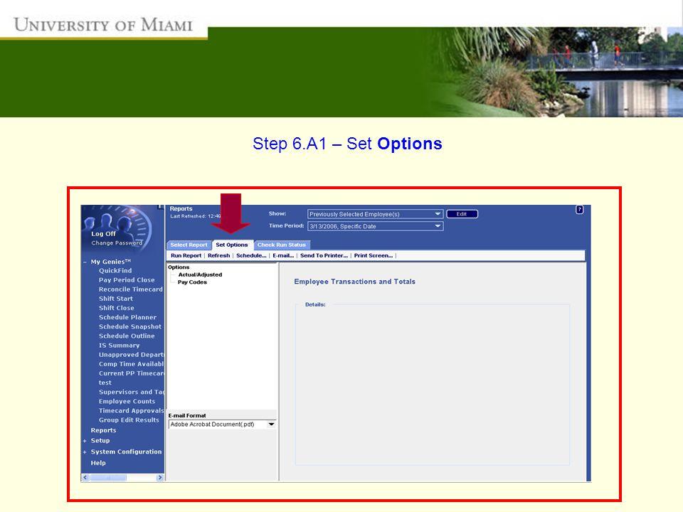 Step 6.A1 – Set Options