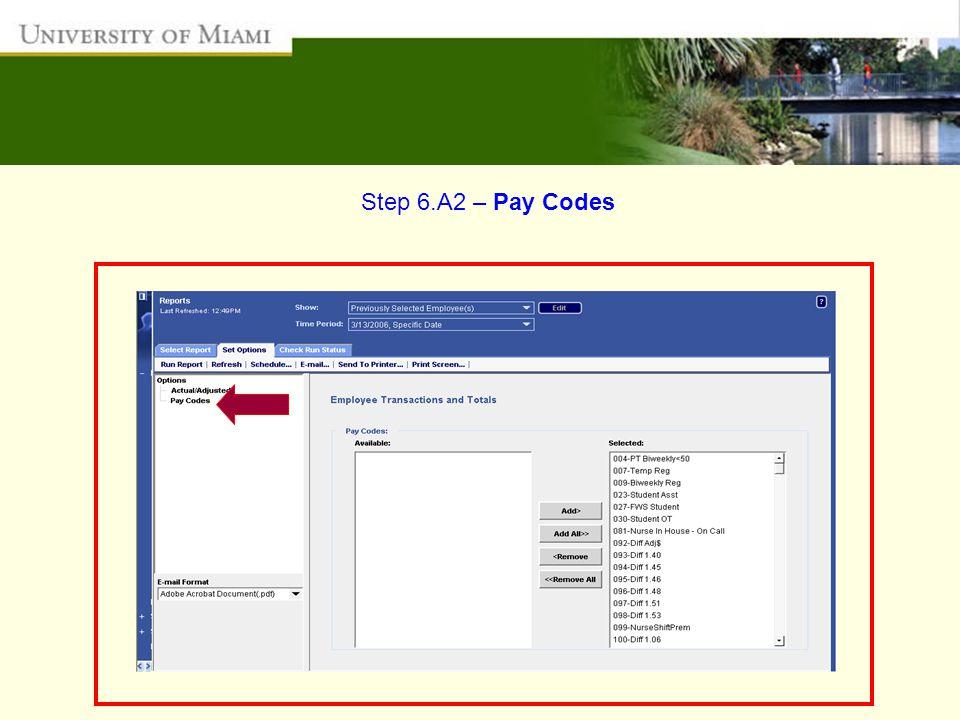Step 6.A2 – Pay Codes