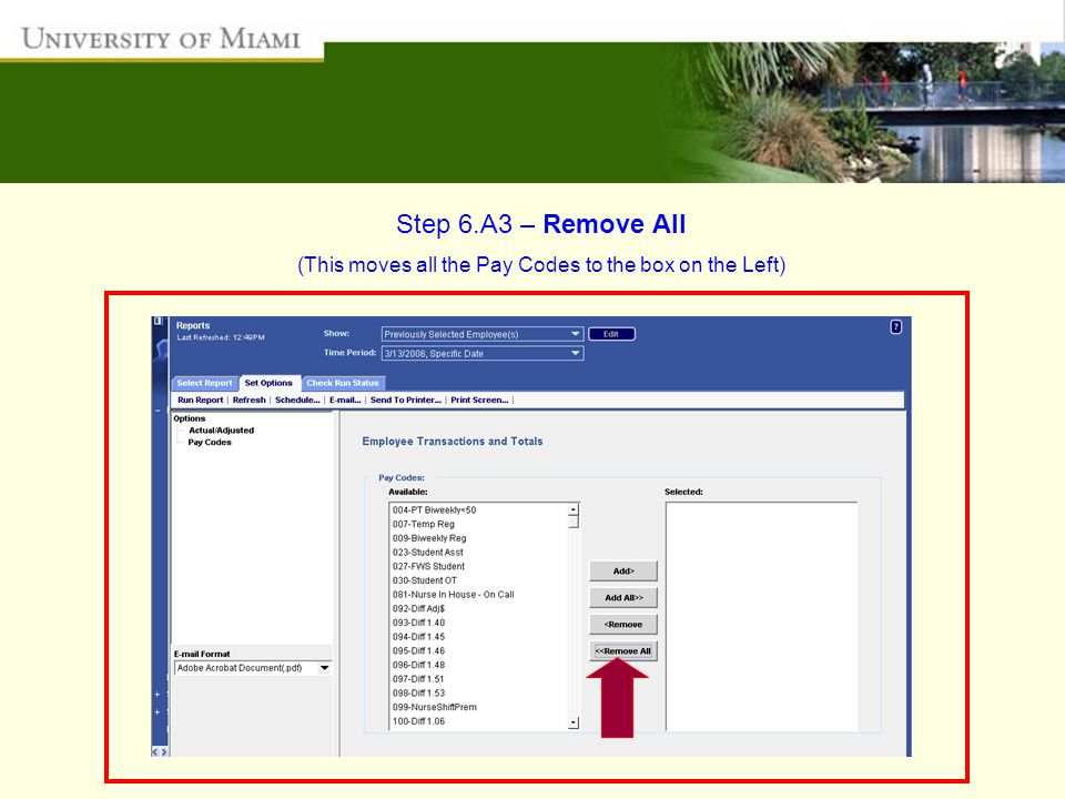 Step 6.A3 – Remove All (This moves all the Pay Codes to the box on the Left)