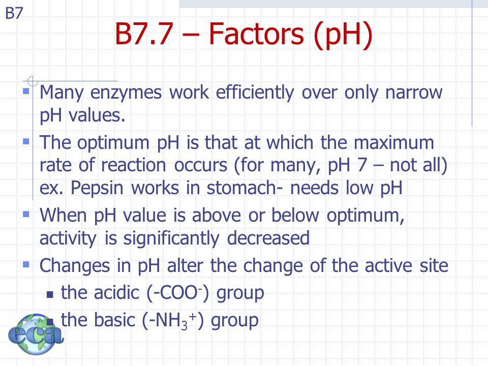 B7 B7.7 – Factors (pH)  Many enzymes work efficiently over only narrow pH values.  The optimum pH is that at which the maximum rate of reaction occu