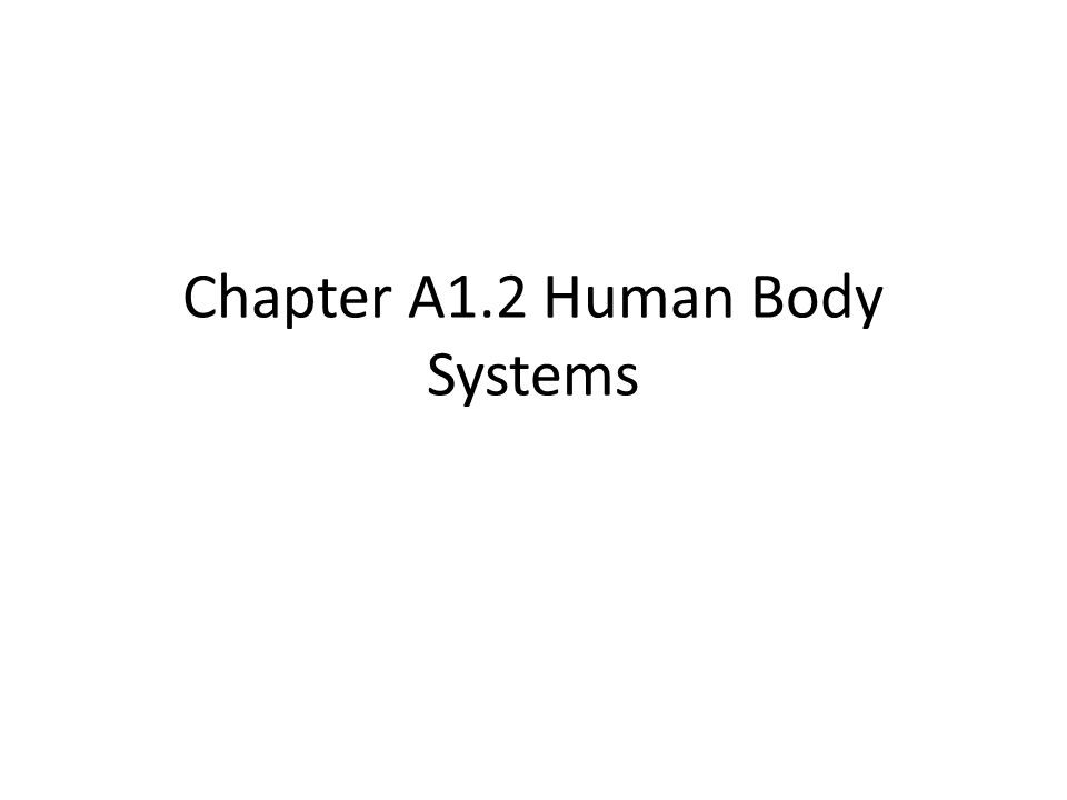 Chapter A1.2 Human Body Systems