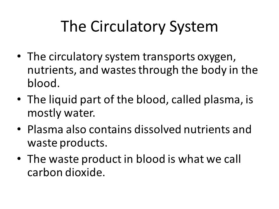 The Circulatory System The circulatory system transports oxygen, nutrients, and wastes through the body in the blood.
