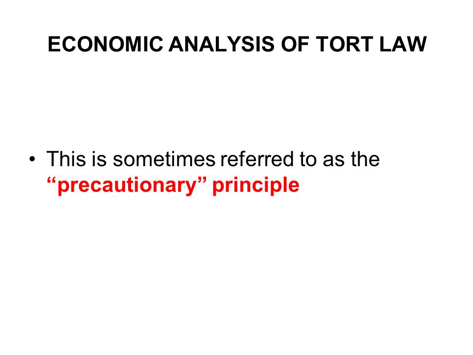 "ECONOMIC ANALYSIS OF TORT LAW This is sometimes referred to as the ""precautionary"" principle"