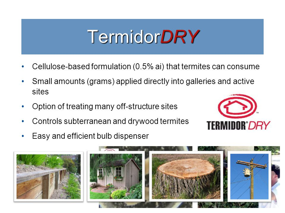 Cellulose-based formulation (0.5% ai) that termites can consume Small amounts (grams) applied directly into galleries and active sites Option of treating many off-structure sites Controls subterranean and drywood termites Easy and efficient bulb dispenser TermidorDRY