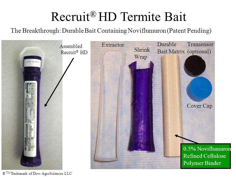 Formosan Sub Termites, Coptotermes formosanus, feeding on Recruit ® HD ® TM Trademark of Dow AgroSciences LLC