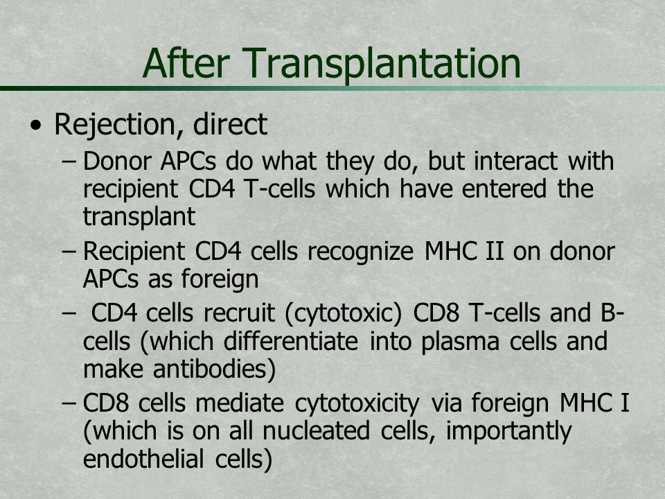 After Transplantation Rejection, direct – –Donor APCs do what they do, but interact with recipient CD4 T-cells which have entered the transplant – –Re