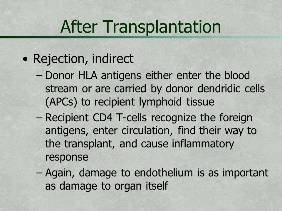 After Transplantation Rejection, indirect – –Donor HLA antigens either enter the blood stream or are carried by donor dendridic cells (APCs) to recipi