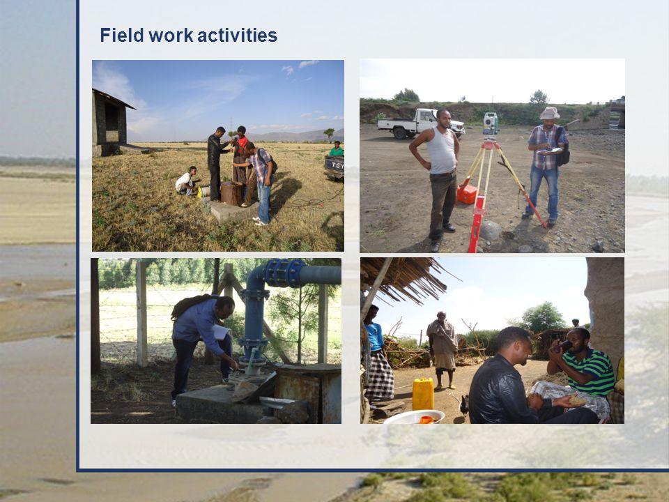 Field work activities