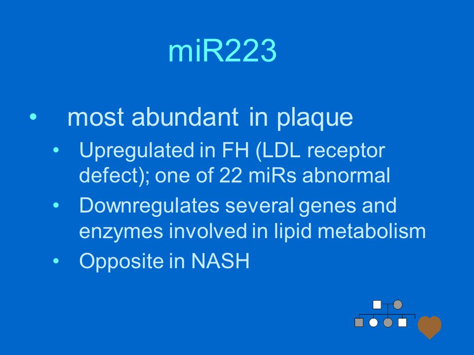 miR223 most abundant in plaque Upregulated in FH (LDL receptor defect); one of 22 miRs abnormal Downregulates several genes and enzymes involved in lipid metabolism Opposite in NASH