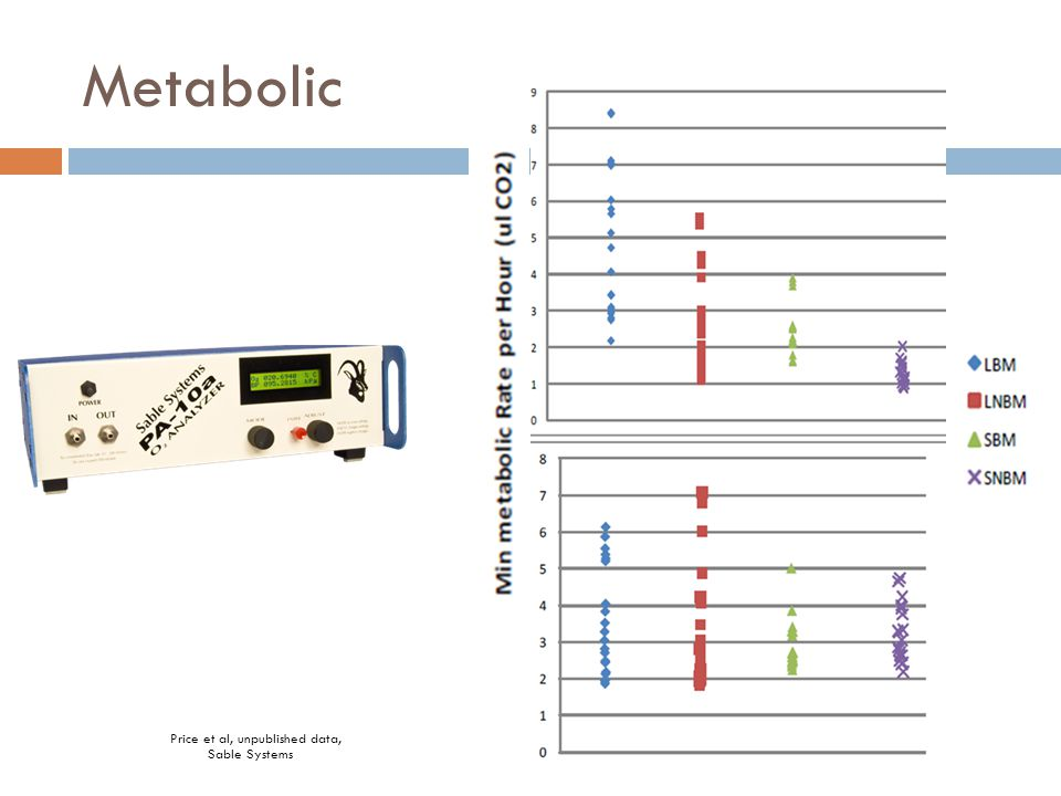 Metabolic Price et al, unpublished data, Sable Systems