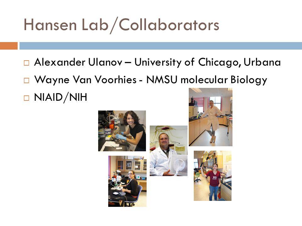 Hansen Lab/Collaborators  Alexander Ulanov – University of Chicago, Urbana  Wayne Van Voorhies - NMSU molecular Biology  NIAID/NIH