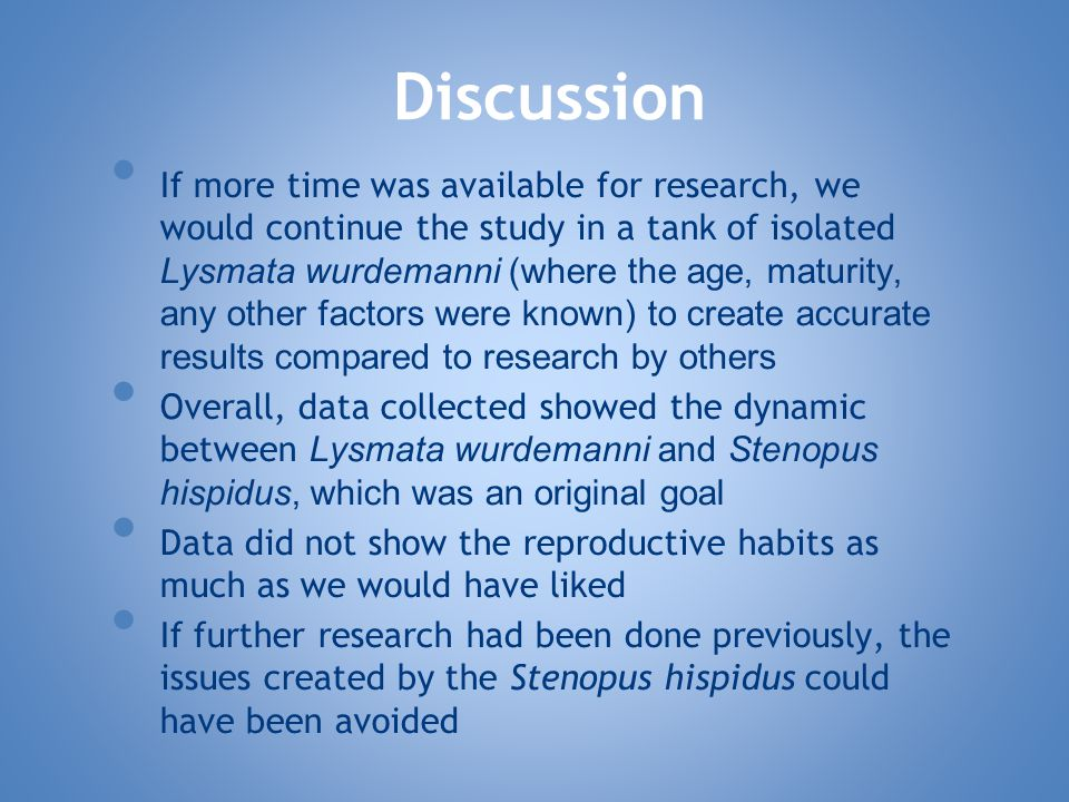 If more time was available for research, we would continue the study in a tank of isolated Lysmata wurdemanni (where the age, maturity, any other factors were known) to create accurate results compared to research by others Overall, data collected showed the dynamic between Lysmata wurdemanni and Stenopus hispidus, which was an original goal Data did not show the reproductive habits as much as we would have liked If further research had been done previously, the issues created by the Stenopus hispidus could have been avoided Discussion