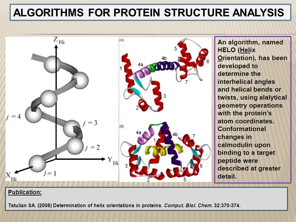 ALGORITHMS FOR PROTEIN STRUCTURE ANALYSIS An algorithm, named HELO (Helix Orientation), has been developed to determine the interhelical angles and he